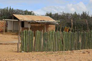 Alta Guajira