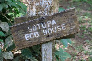 Sotupa Ecolodge, Rio Tambopata, Amazonas, Peru