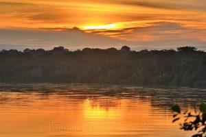Rio Tambopata, Amazonas, Madre de Dios, Peru