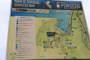 Nationalreservat Paracas, Peru